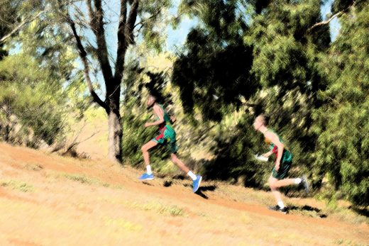 All Schools Cross Country results