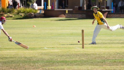 SACCSS Senior Cricket & Netball results – Round 1