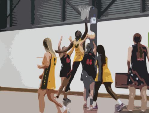 SACCSS Senior Girls Netball champions