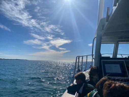 SMC Marine Biology Tours @ Queenscliff